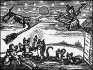 History of Feline Dance